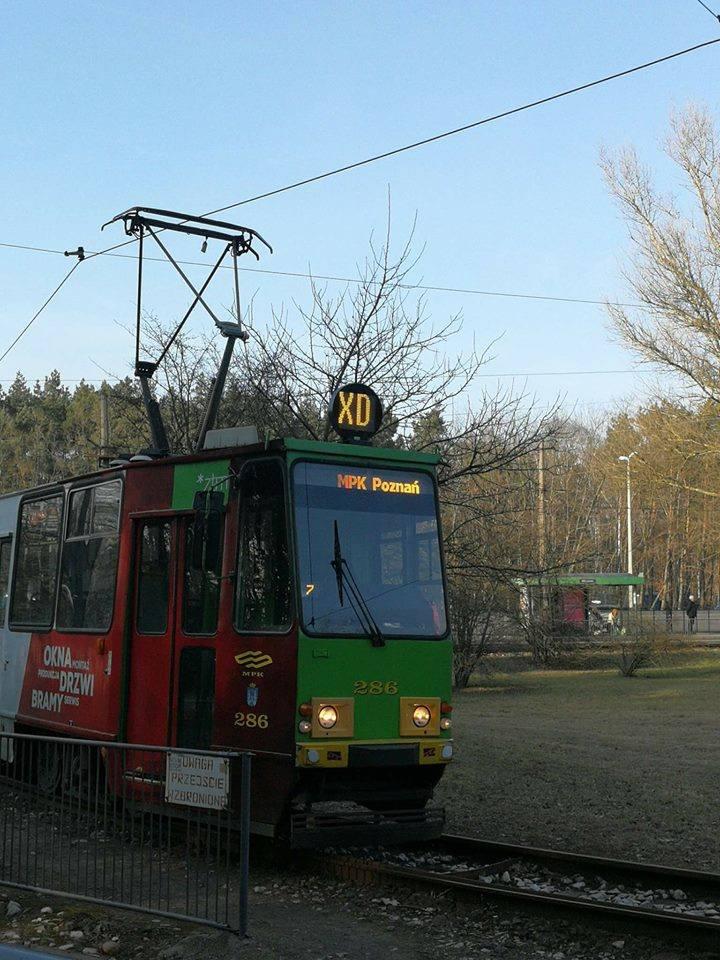 Codzienne podróżowanie MPK Poznań dostarcza wielu niezapomnianych przeżyć. Zobacz, co zaskakuje, dziwi i śmieszy pasażerów poznańskich autobusów i tramwajów.Przejdź