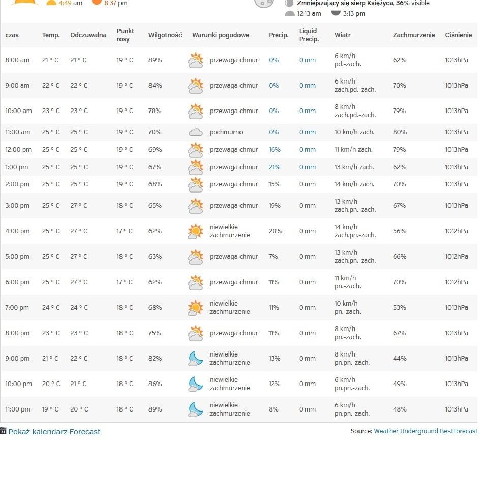 Temperatura Godzinowa