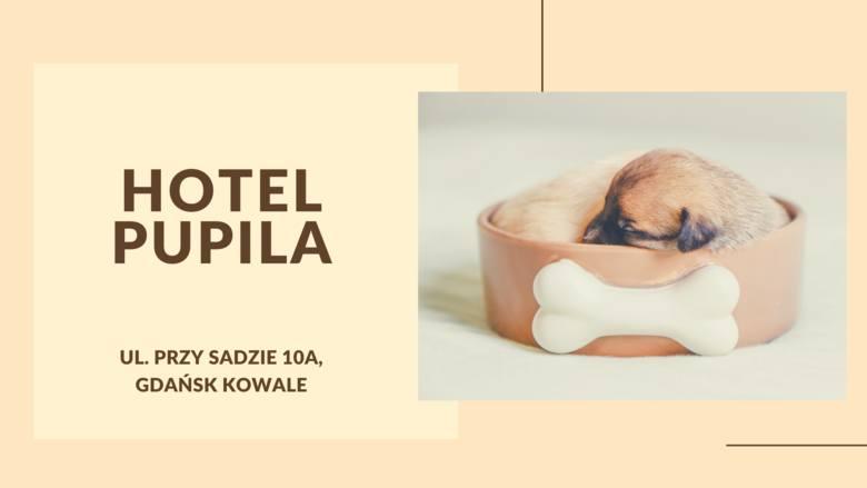Hotel PupilaAdres: ul. Przy Sadzie 10aTelefon: 505 44 17 18Podopiecznym hotelu właściciele oferują  domowe warunki z opcją spania na kanapie i przebywania