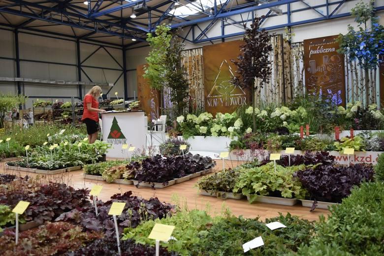 Pierwszym wydarzeniem Skierniewickiego Święta Kwiatów, Owoców i Warzyw 2019 było otwarcie Targów Ogrodniczo-Rolnych w hali OSiR. Swoje produkty wystawiły tam dziesiątki wystawców różnych branż ogrodniczo-rolnych, a także spożywczej. Warto odwiedzić te targi.