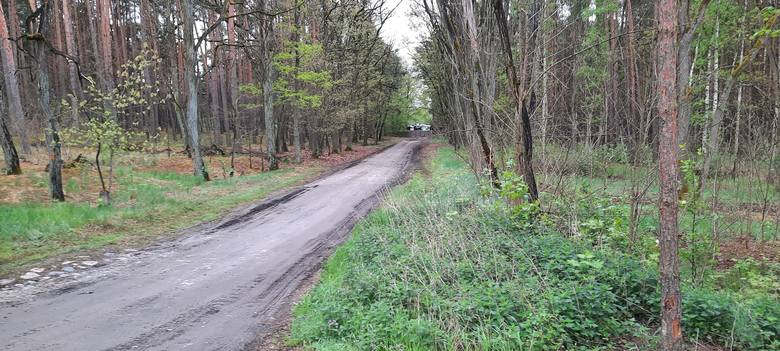 W Odrze niedaleko Krosna Odrzańskiego znaleziono zwłoki. Czy ma to związek z zaginięciem nastolatków z Ledna?