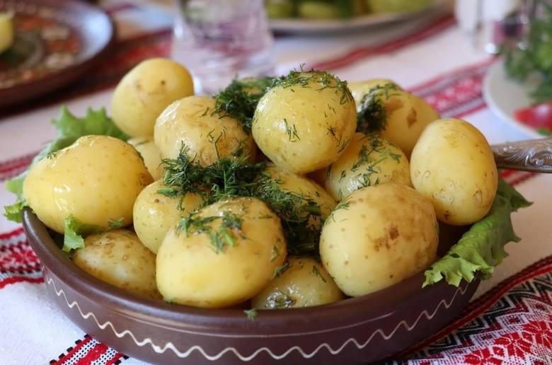 Mateusz Morawiecki zapowiedział, że bon gastronomiczny będzie działał podobnie jak wprowadzony w wakacje 2020 roku Polski Bon Turystyczny. Ten drugi