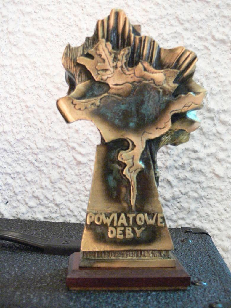 Znamy laureatów nagrody Powiatowe Dęby. Została ustanowiona w 2001r. uchwałą Rady Powiatu Skarżyskiego. Obecnie honorowe statuetki autorstwa Janusza