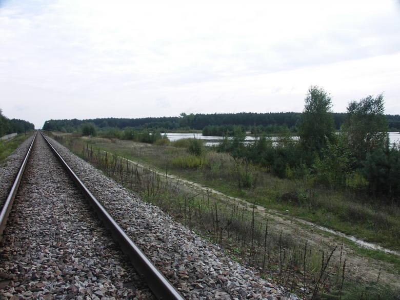 Zbiornik wodny w Wojkowie