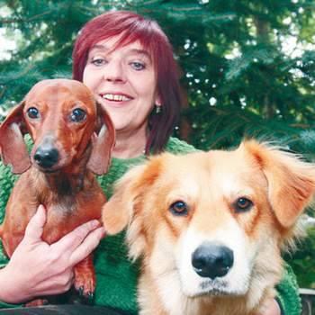Pani Lucyna i psy