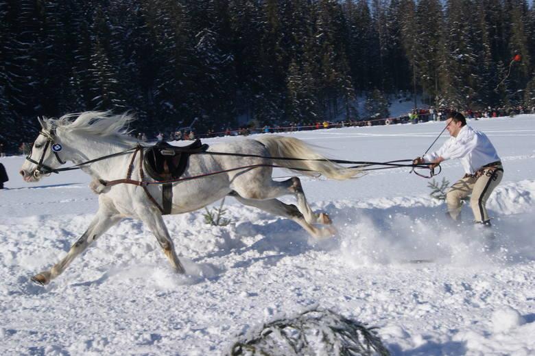 Skiring, ski-skiring oraz kumoterki. To najbardziej ekscytujące z zimowych sportów w górach. Co prawda amatorzy sami nie powinni ich uprawiać, ale zawsze