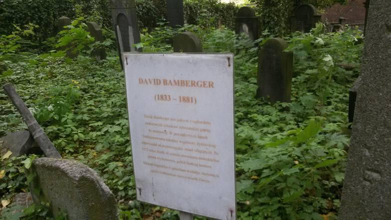 Niezwykły ogród pamięci. Cmentarz żydowski w Zabrzu na filmie 360 stopni PROGRAM 360 DOOKOŁA ŚLĄSKA
