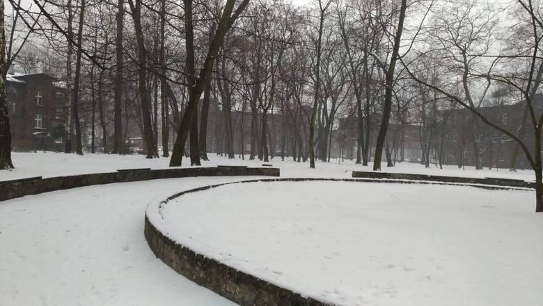Park przy ulicy Maliny i Andersa zostanie parkiem. Miasto przejmie jego tereny od spółdzielni. Zobacz kolejne zdjęcia. Przesuń zdjęcia w prawo - wciśnij