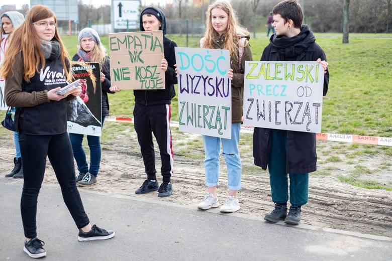 Zoo Poznań ratuje tygrysy. Natomiast pod M1 ma gościć cyrk. Czy będą pokazy dzikich zwierząt?