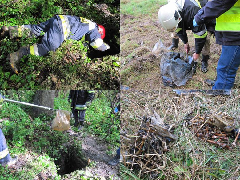 Po Słowienkowie (gmina Będzino) od kilku dni krążyła plotka o tym, że miejscowi odkryli na terenie dawnego niemieckiego gospodarstwa ludzkie kości. Prawda
