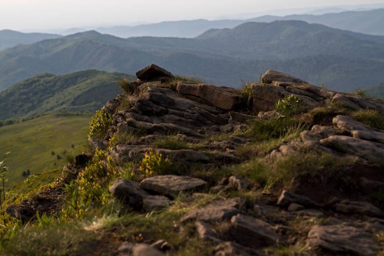 Szlak biegnący granią Bukowego Berda niektórzy uważają za jedną z najpiękniejszych tras w Bieszczadach.
