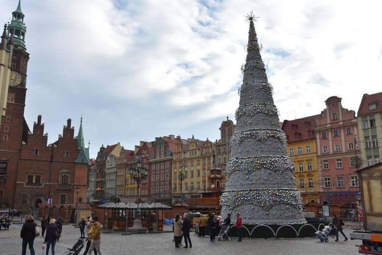Świąteczne drzewko we Wrocławiu i jego wygląd zawsze wzbudza emocje. Tegoroczna choinka (na zdjęciu) już się pojawiła i czeka teraz na oficjalnie rozświetlenie.
