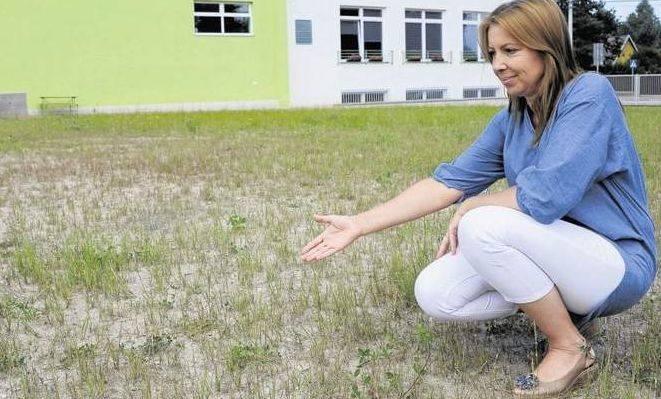 Teraz przedszkolny ogród przy ul. Brzoskwiniowej nie jest zbyt bezpieczny dla dzieci. Są miejsca, gdzie pod trawą ukrywa się gruz. To ma się zmienić