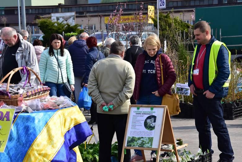 Trwają targi Dom, Ogród i Ty. W sobotę odwiedziły je tłumy mieszkańców z całego regionu świętokrzyskiego [ZDJĘCIA]