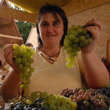 W Domku Winiarza wino można kupić. Wprawdzie nie nasz, ale zawsze jest to trunek.