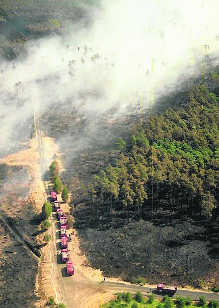 W kulminacyjnej fazie pożaru w akcji gaśniczej uczestniczyło 859 sekcji straży pożarnej (4700 strażaków, ponad tysiąc wozów gaśniczych), 3200 żołnierzy,
