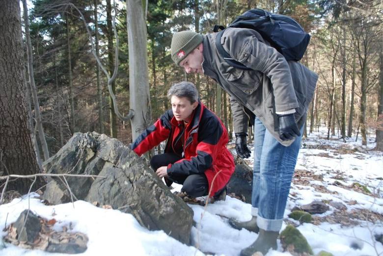 Odkrycie sprzed 410 milionów lat pod Kielcami