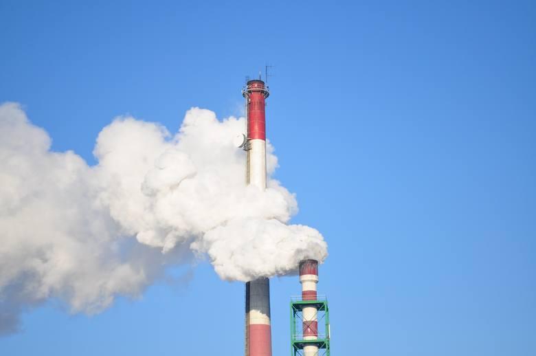 Wciąż dużo dymu tytoniowego nad Polską. Jak to zmienić? Świat zna sposoby