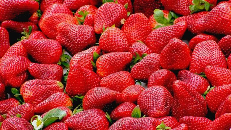 Na żaden inny sezonowy produkt Polacy nie czekają tak bardzo jak na truskawki. Co w nich widzimy? Przebadano to (i nas).