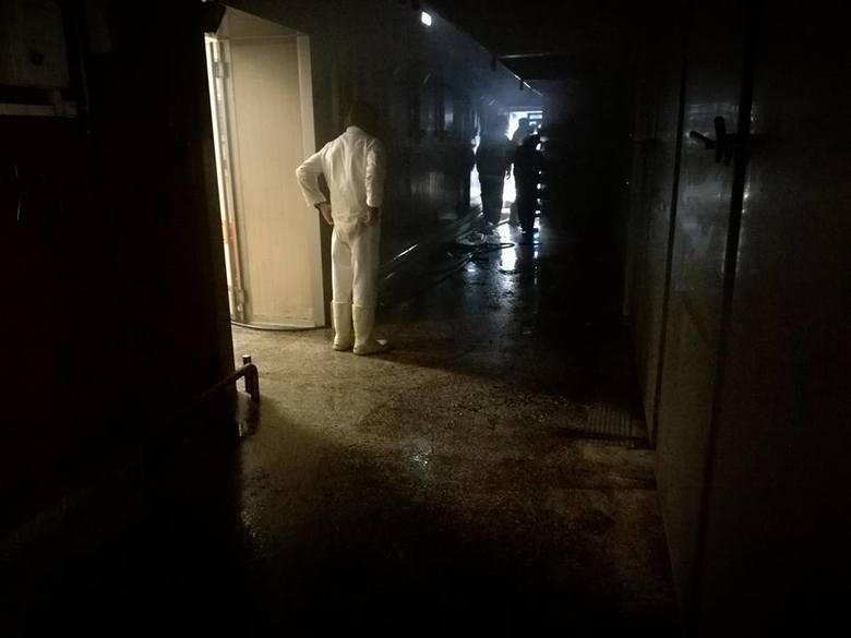 """Do pożaru w Zakładzie Mięsnym """"Podlasie"""" w Mońkach doszło w czwartek. Okazało się, że palą się wędzarnie. Zdjęcia dzięki uprzejmości"""