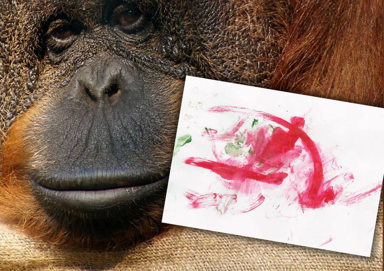 Obrazek namalowany przez orangutanicę Raję z gdańskiego zoo na aukcji WOŚP
