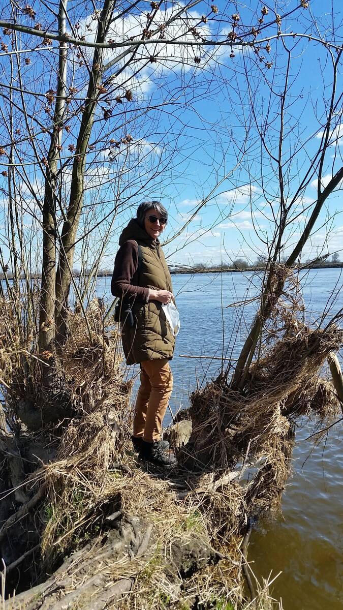 Wolna rzeka jest życiodajna, pozwólmy Wiśle dawać życie