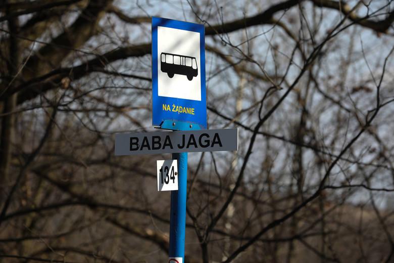 Baba JagaKilkanaście lat temu w pobliżu Lasku Wolskiego mieściła się drewniana kawiarnia, która została nazwana Babą Jagą. Kto wie, może wcześniej mieszkała
