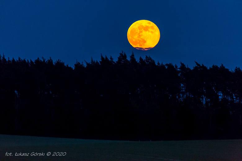 Zobacz piękne zdjęcia Łukasza Górskiego. Nasz internauta uchwycił na fotografiach superksiężyc oraz widowiskowy zachód słońca. Zdjęcia wykonane w okolicach