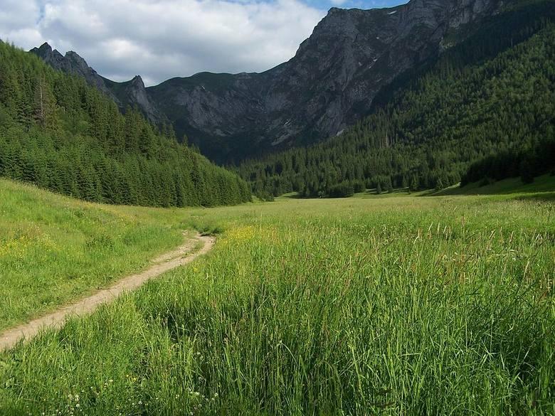 Dolina Małej ŁąkiWyjątkowo urokliwa dolinka, gdzie również nie ma tłumów. Jedyna dolina w otoczeniu Zakopanego, które dochodzi do samego grzbietu głównego
