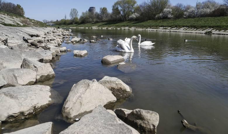 Suszę widać nie tylko na polach, wystarczy spojrzeć, jak mało wody jest w Wisłoku, czy innych rzekach