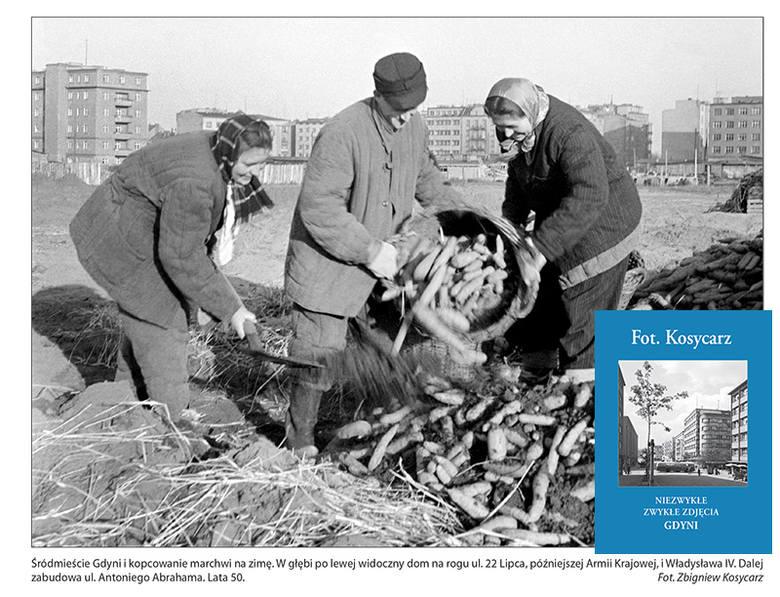 """""""Fot. Kosycarz. Niezwykłe, zwykłe zdjęcia Gdyni"""". Miasto na zdjęciach ojca i syna [ROZMOWA, ZDJĘCIA]"""