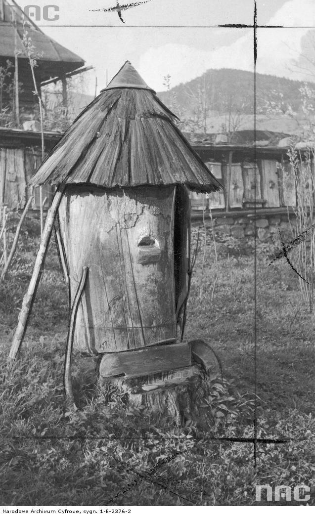 Ul z pasieki Jana Milerskiego wykonany ze starego pnia drzewa.