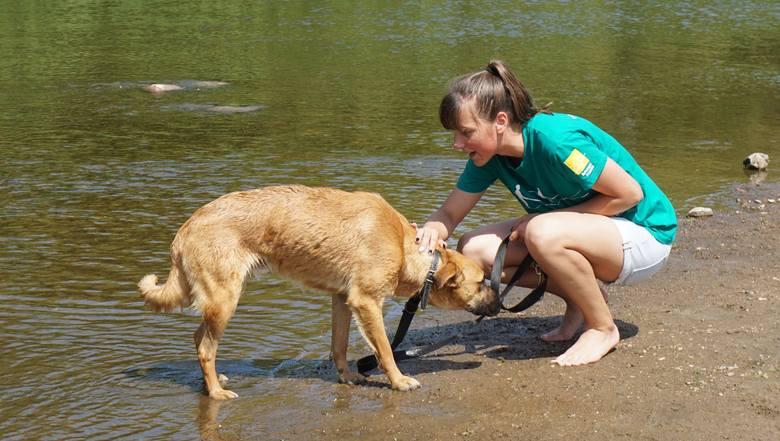 Młodzież odwiedziła psy ze schroniska w Kruszewie.