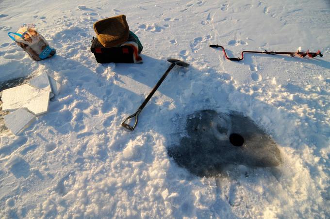 Żaden kit - zimą ryby lubią serek