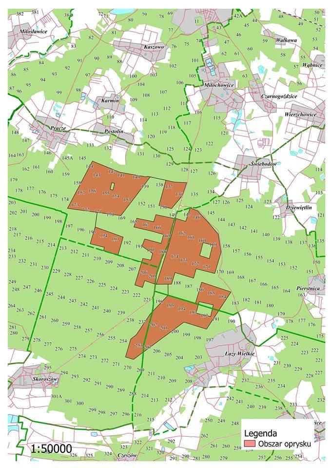 Okresowe zakazy wstępu do lasów na Dolnym Śląsku (SPRAWDŹ)