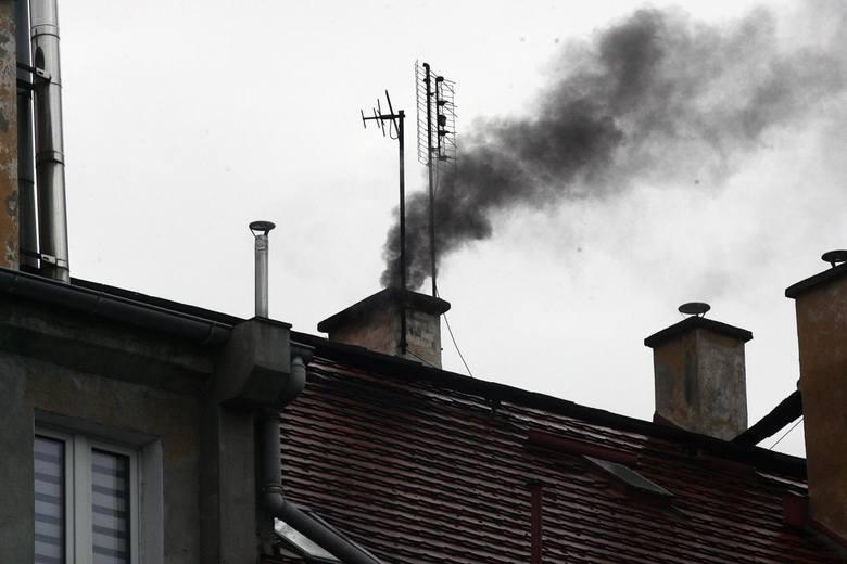 Zgierz jest trzecim najbardziej zapylonym miastem w Polsce!