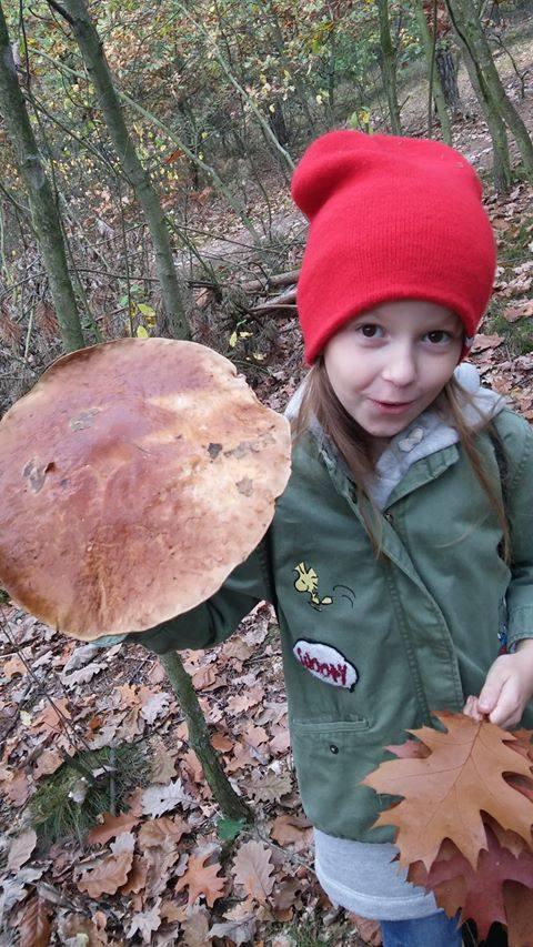 Sezon grzybowy w pełni. W lasach w okolicach Bydgoszczy mamy prawdziwy urodzaj grzybów! Ten okaz jednak na każdym zrobi wrażenie. Pani Joanna znalazła