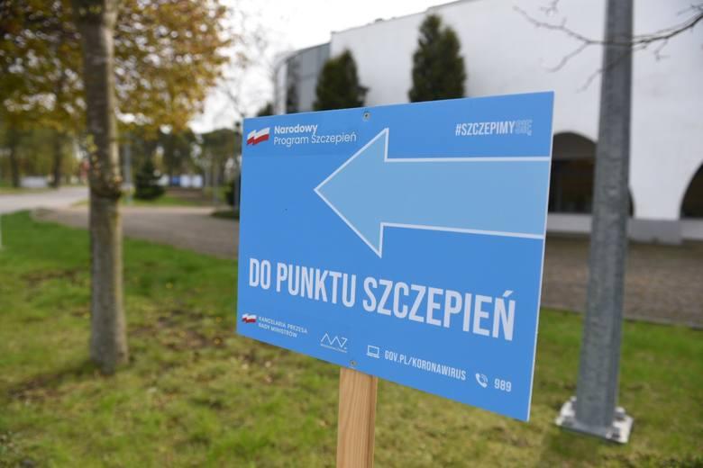 Tak wyglądają szczepienia w Centrum Targowym Park w Toruniu.