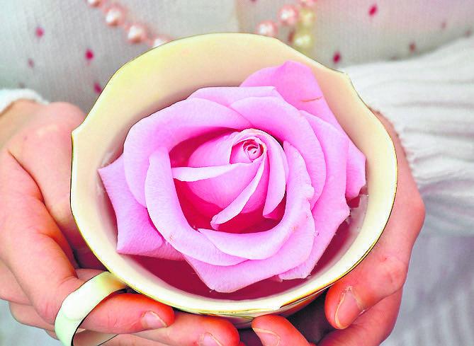 Róże już w starożytności były uważane za lekarstwo na wszystko<br />
