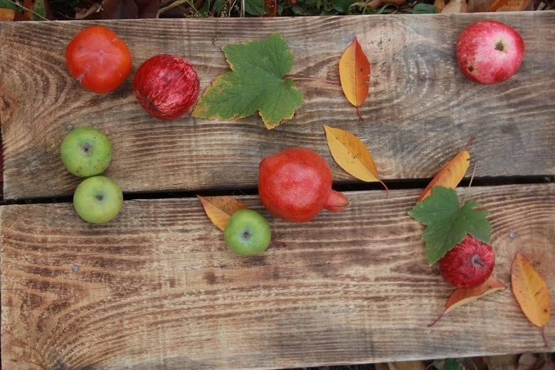 Polacy: Kiedyś owoce i warzywa były smaczniejsze. Co na to PSOR?