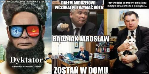 Najlepsze MEMY z Jarosławem Kaczyńskim w roli głównej. Jedni go kochają, inni nienawidzą [GALERIA]