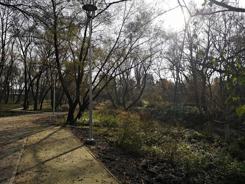 Kraków. Dobiegają końca prace w parku rzecznym Wilga [ZDJĘCIA]