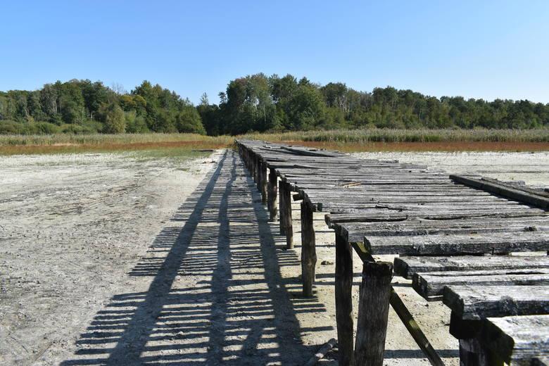 Jezioro Jańsko koło Strużki przechodzi do historii. Woda prawie całkowicie zniknęła. A kiedyś był tam ośrodek wypoczynkowy...