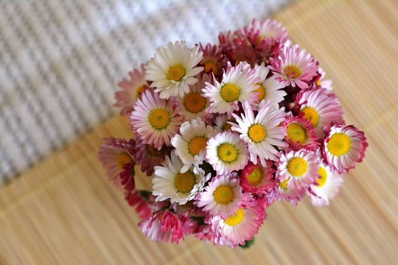 Dzisiaj obchodzimy Dzień Babci. Nie zapomnijcie złożyć życzeń