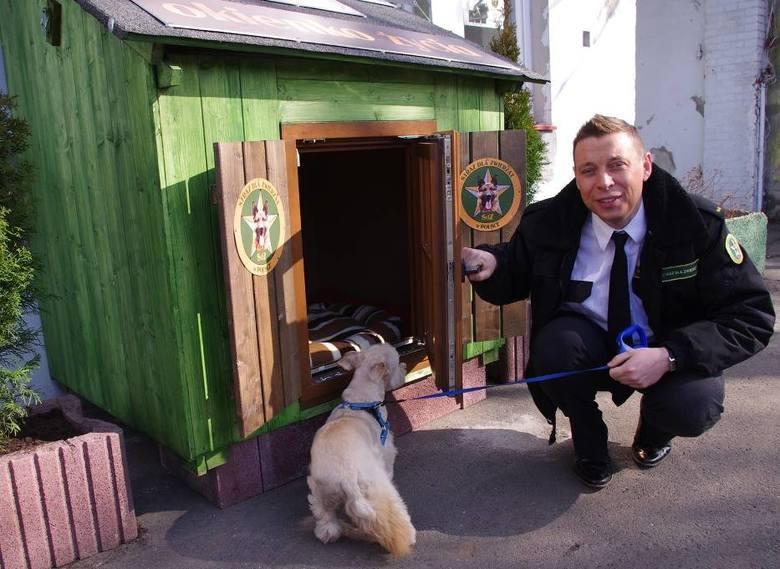 Okno życia dla zwierząt. Czy powstanie wreszcie w Toruniu?