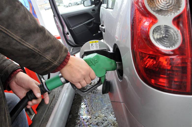 Ceny paliw nieustannie rosną. Gdzie we Wrocławiu tankować, aby zaoszczędzić? Porównaliśmy ceny na wybranych, popularnych i tanich stacjach. Różnice były