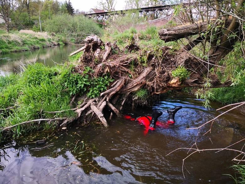 To płetwonurek z Żar znalazł ciało 3,5-letniego Kacperka. O tej sprawie mówiła cała Polska