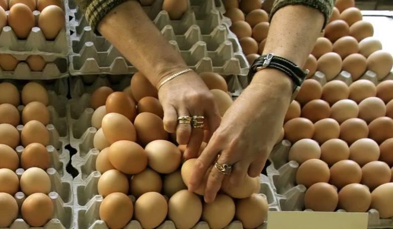 Mogą powiedzieć STOP polskim jajkom! Producenci: To wina urzędników