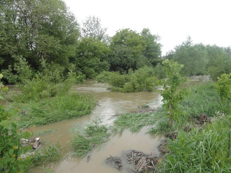 Powiat krakowski. Odwołany alarm powodziowy