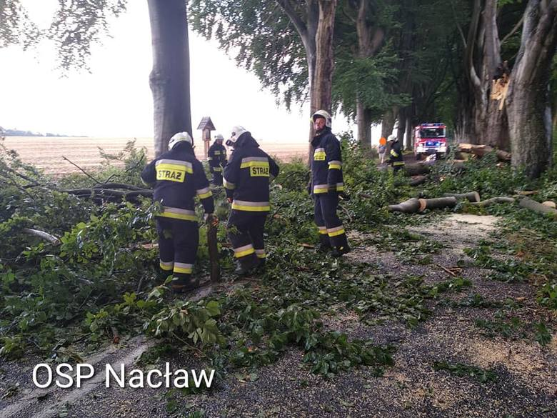 OSP Nacław: - O godzinie 17:05 zostaliśmy zadysponowani do złamanych konarów drzew zalegających na jezdni między Nacławiem a Nadbarem.